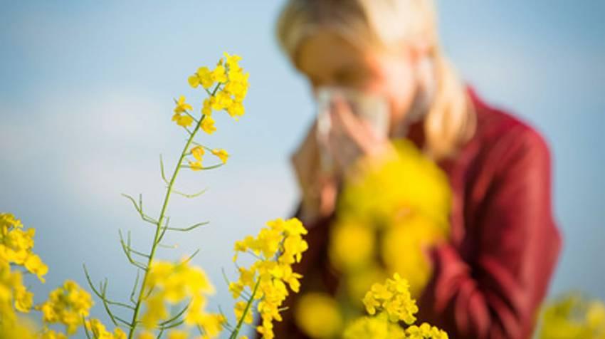 Alergias bajo control