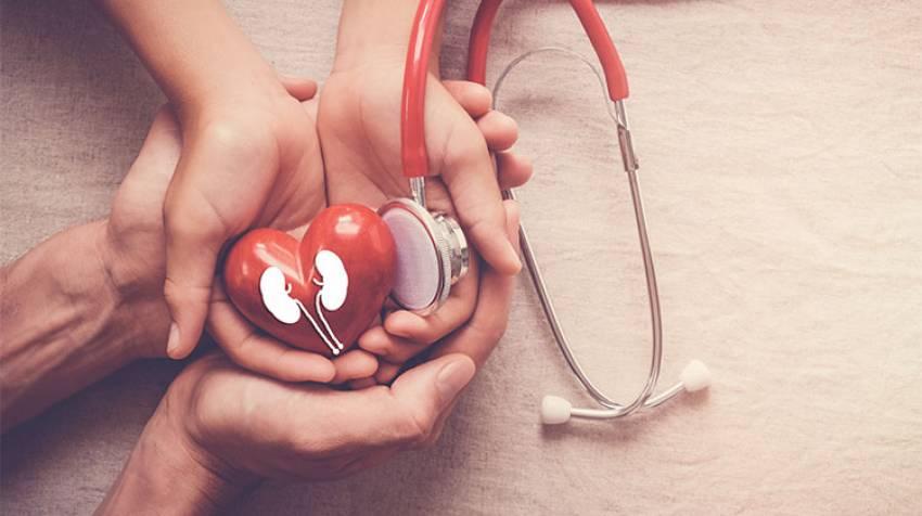 Cuida tus riñones: Protegerás tu corazón