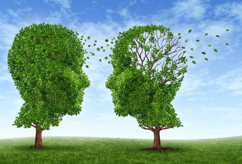 Alzheimer y demencia senil ¿es lo mismo?