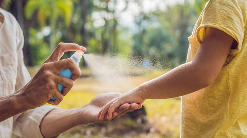 Alergia a las picaduras ¡Que no cunda el pánico!