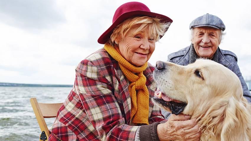 Zooterapia. Animales: tu mejor medicina