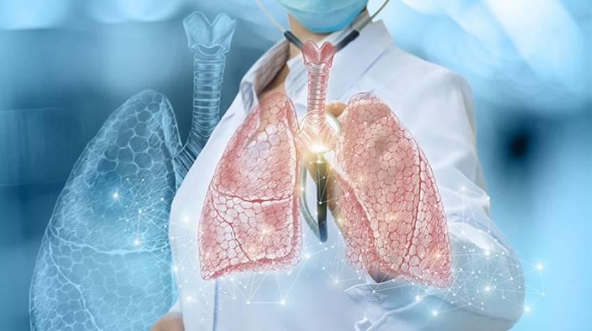 Pulmones ¡Llénalos de aire limpio!