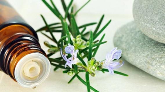 Flores de Bach ¿Terapia o placebo?