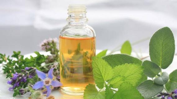 Aceite de borraja: Rico en ácidos grasos esenciales