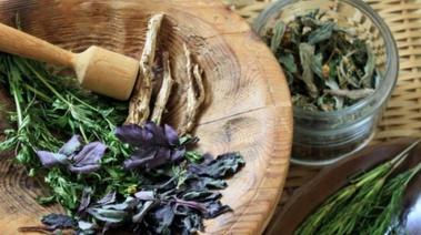 Plantas saciantes: para controlar mejor el apetito